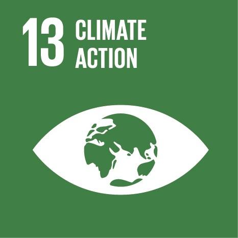 SDG13.jpg