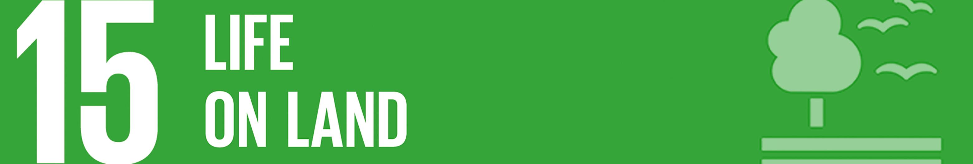 SDG2_mini banner.jpg
