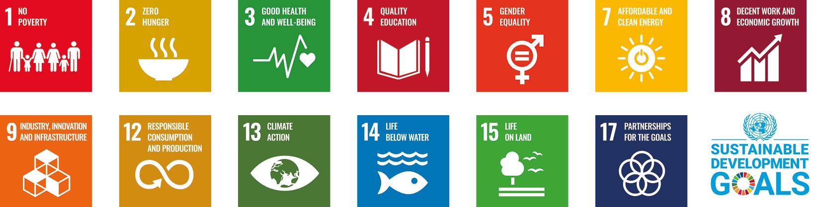 Double line SDG mini banner.png